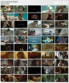 XConfessions Vol. 3 (2014) Erika Lust DVDRip