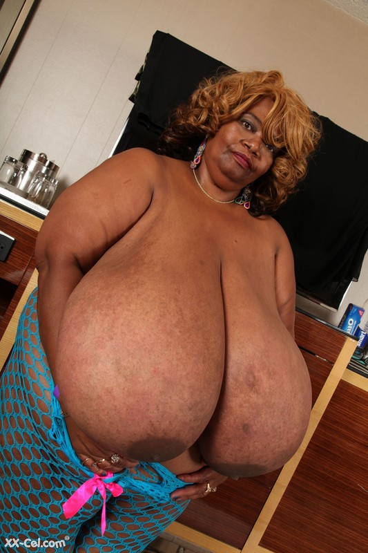 Norma Stitz - XX-Cel - 280 Photos 4 SETS