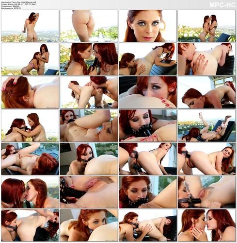 http://img162.imagetwist.com/th/14736/p70esyhhypk1.jpg