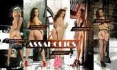 lifeselector - Assaholics
