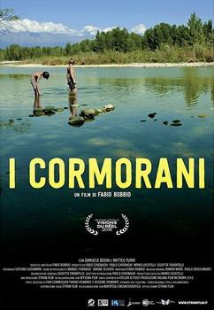 I cormorani. 2016.