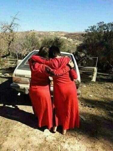 العاهرات والنيك السيارات