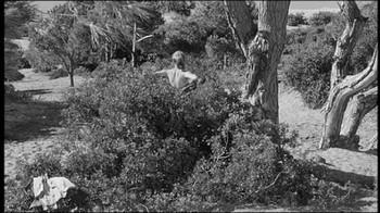 Sophia Loren / Peccato che sia una canaglia / nipple / (IT 1954) 33pits9yh5o3