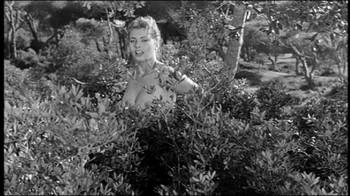 Sophia Loren / Peccato che sia una canaglia / nipple / (IT 1954) 6s4cyhq9gk5u