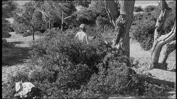 Sophia Loren / Peccato che sia una canaglia / nipple / (IT 1954) Px2ziiw5pwz8